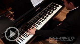 Nagyszentmiklós, Hungary, 25.03.1881 -  New York, 26.09.1945 ( piano Takeo TCHINAI )